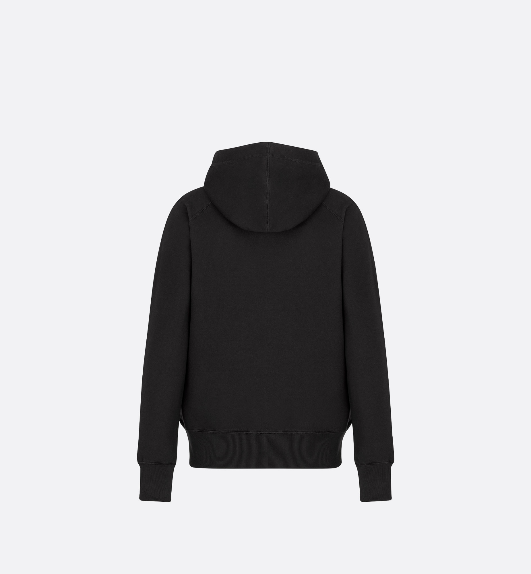 DIOR AND PETER DOIG Hooded Sweatshirt Back view Open gallery