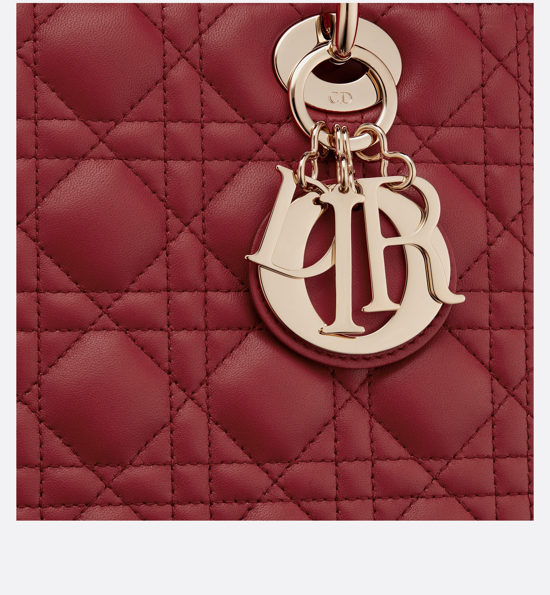 Medium Lady Dior Bag Detailed view Open gallery